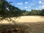 Zandverstuiving vlakbij Vakantiehuis Wabi Sabi